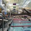 Swim Team Looking Forward To Good Season