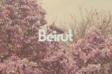 """Review: Beirut's """"No No No"""""""