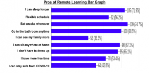 Remote Learning: The Benefits and Drawbacks for Ninth Graders at THS