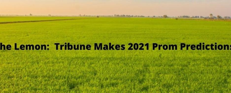 The Lemon:  Tribune Makes Prom 2021 Predictions
