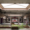 The Dead Mall Effect